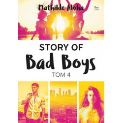 Story of Bad Boys T.4